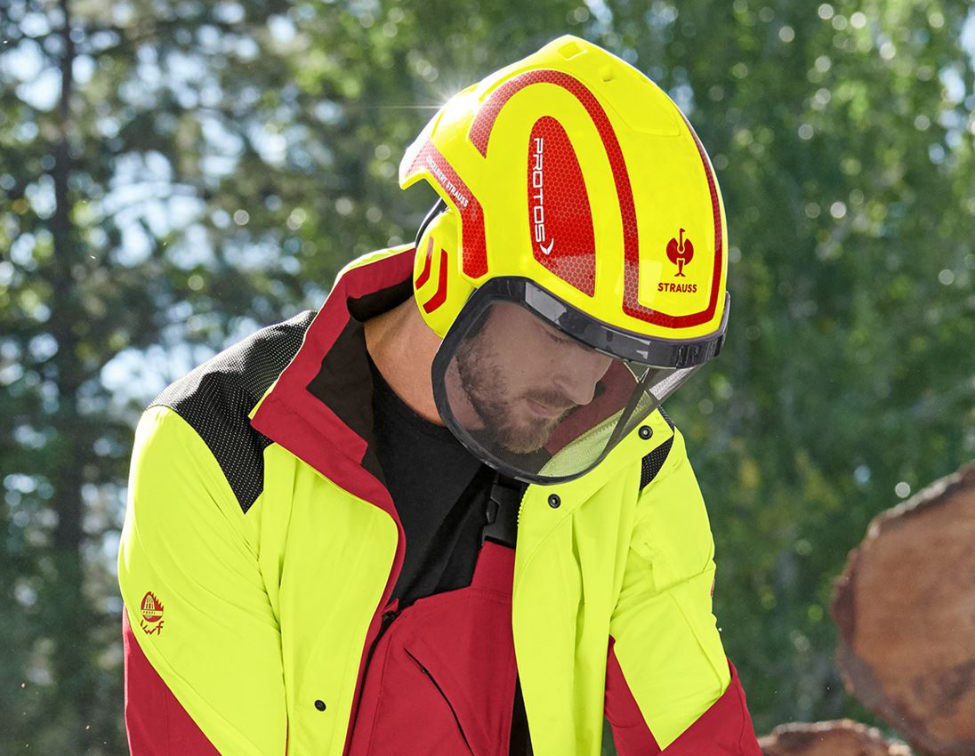 Ochranné přilby: e.s. Lesnická helma Protos® + výstražná žlutá/ohnivě červená