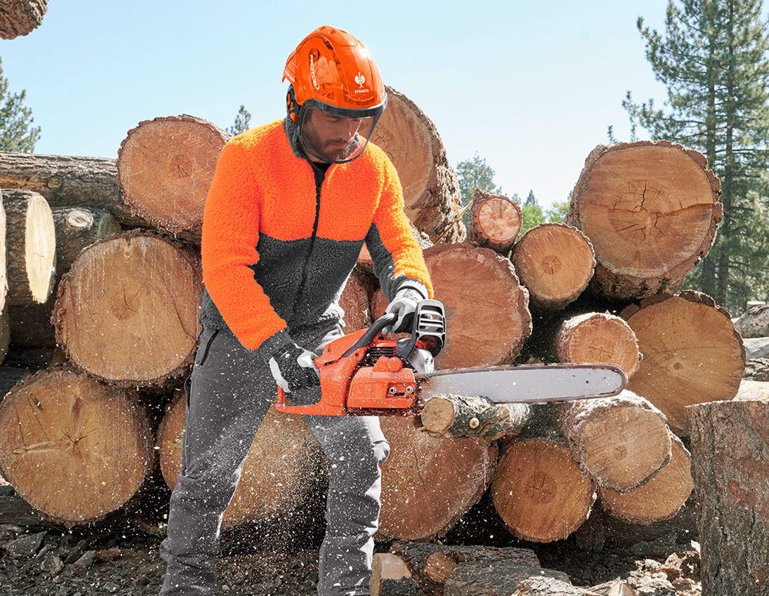 Ochranné přilby: e.s. Lesnická helma Protos® + výstražná oranžová woodprint 2