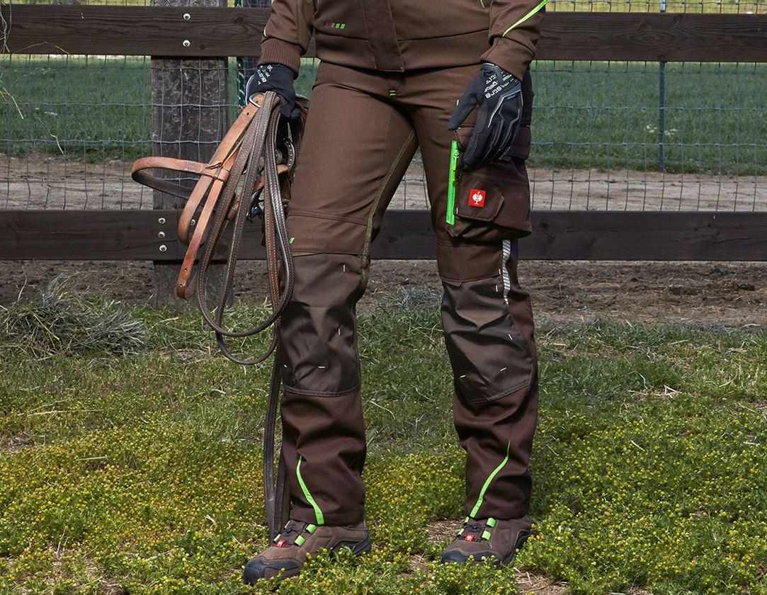 Pracovní kalhoty: Dámské kalhoty e.s.motion 2020 zimní + kaštan/mořská zelená