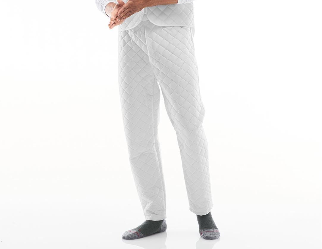 Spodní prádlo   Termo oblečení: Termokalhoty Rotterdam + bílá